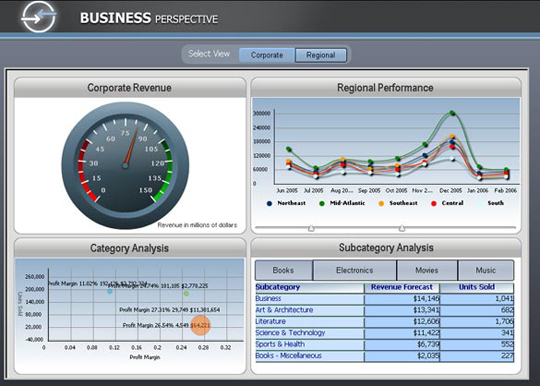 Sample MicroStrategy 8 Dashboard